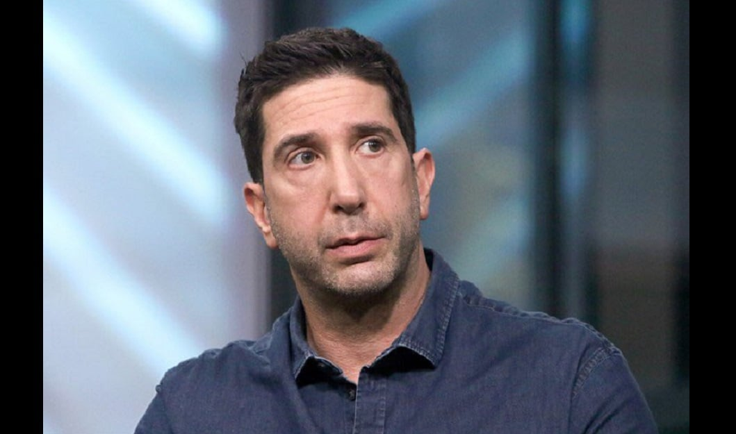 David Schwimmer admits lack of representation on Friends felt 'wrong', says he pushed for more diverse cast 6
