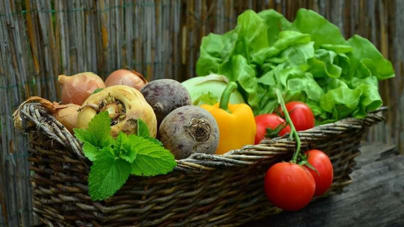 Diets to control hypertension: Research shows plant-based foods capable of lowering blood pressure