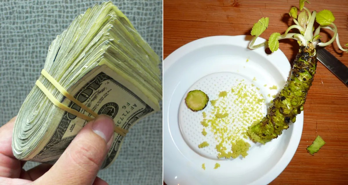 Real Wasabi Is One of the Most Expensive Crops on the Planet  First We Feast