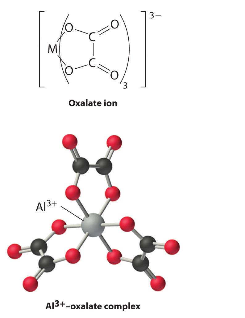 C2o4 2- Lewis Structure : lewis, structure, Flashcards, Quizlet
