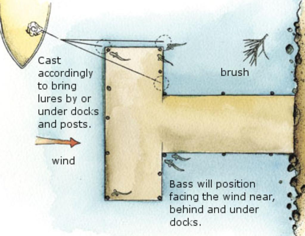 hight resolution of  the bass will be positioned often it s important to look for the little pieces of cover or structure that redirect the current and draw in the fish
