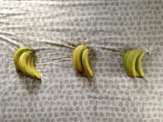 The Best Way to Store Bananas 3