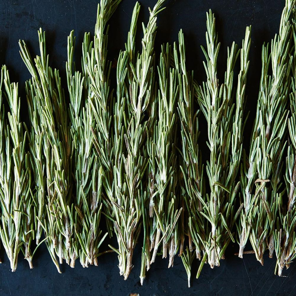 medium resolution of fresh rosemary and how to use it at every meal