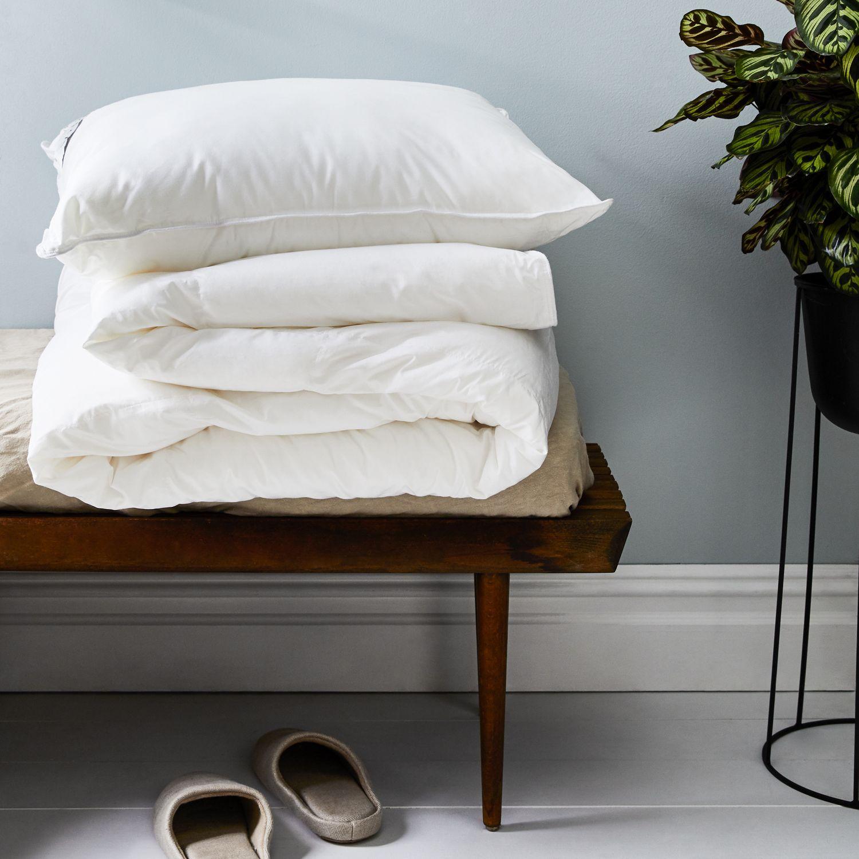 Arcadia DownAlternative Pillow Inserts on Food52