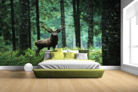 Edelhert in het bos Fotobehang