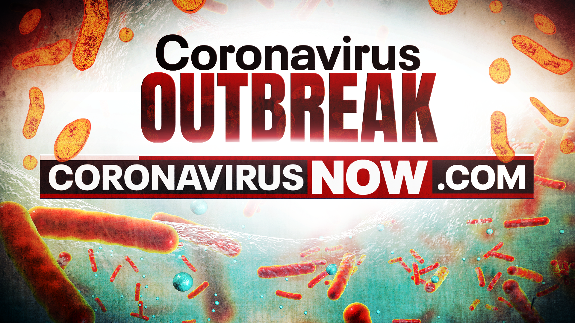 2nd presumptive positive COVID-19 coronavirus case reported in ...