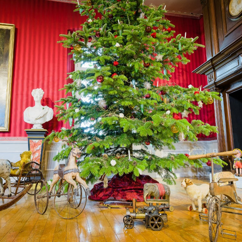 Christmas At The Chateaux A Fairy Tale For The Young And Old