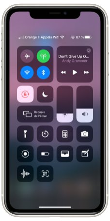 iPhone 11 UI test (3)