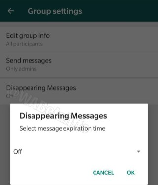 WhatsApp autodestruction messages délai