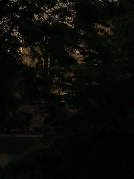 Mode nuit du Honor 9X Pro, zoom numérique 2x