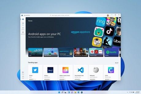 Windows 11 Microsoft Store image (3)