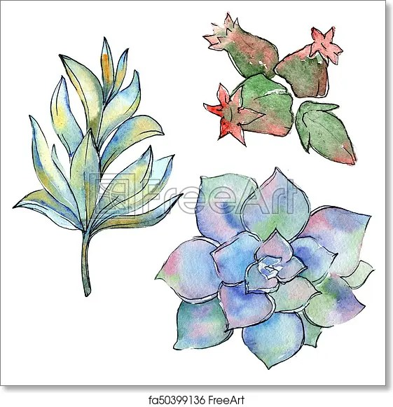 Free Art Print Of Tropical Cactus Leaves In A Watercolor