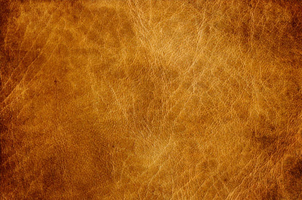 40 Leather Textures  PSD Vector EPS JPG Download