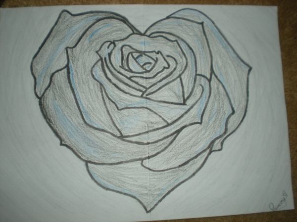Rose Drawings Pencil Sketches Freecreatives