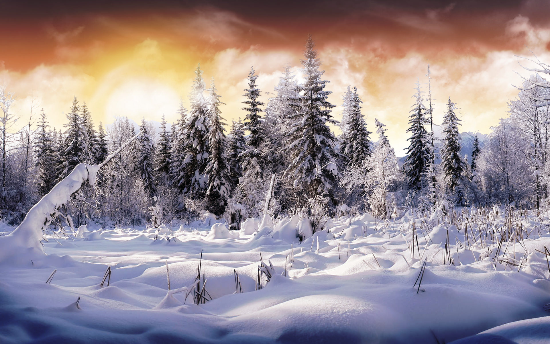 Free Download Of Christmas Wallpaper With Snow Falling 21 Winter Wallpapers Backgrounds Images Freecreatives