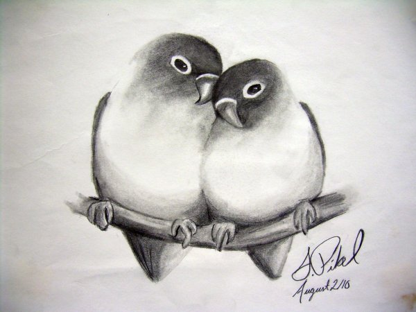 Love Drawings Pencil Sketches Freecreatives