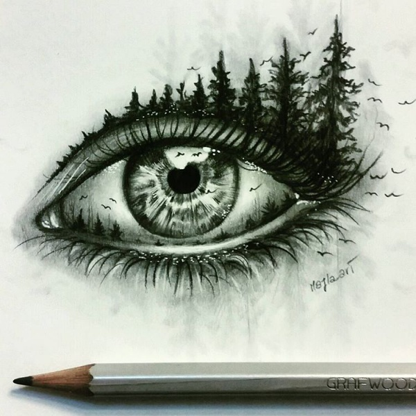 15 pencil drawings of