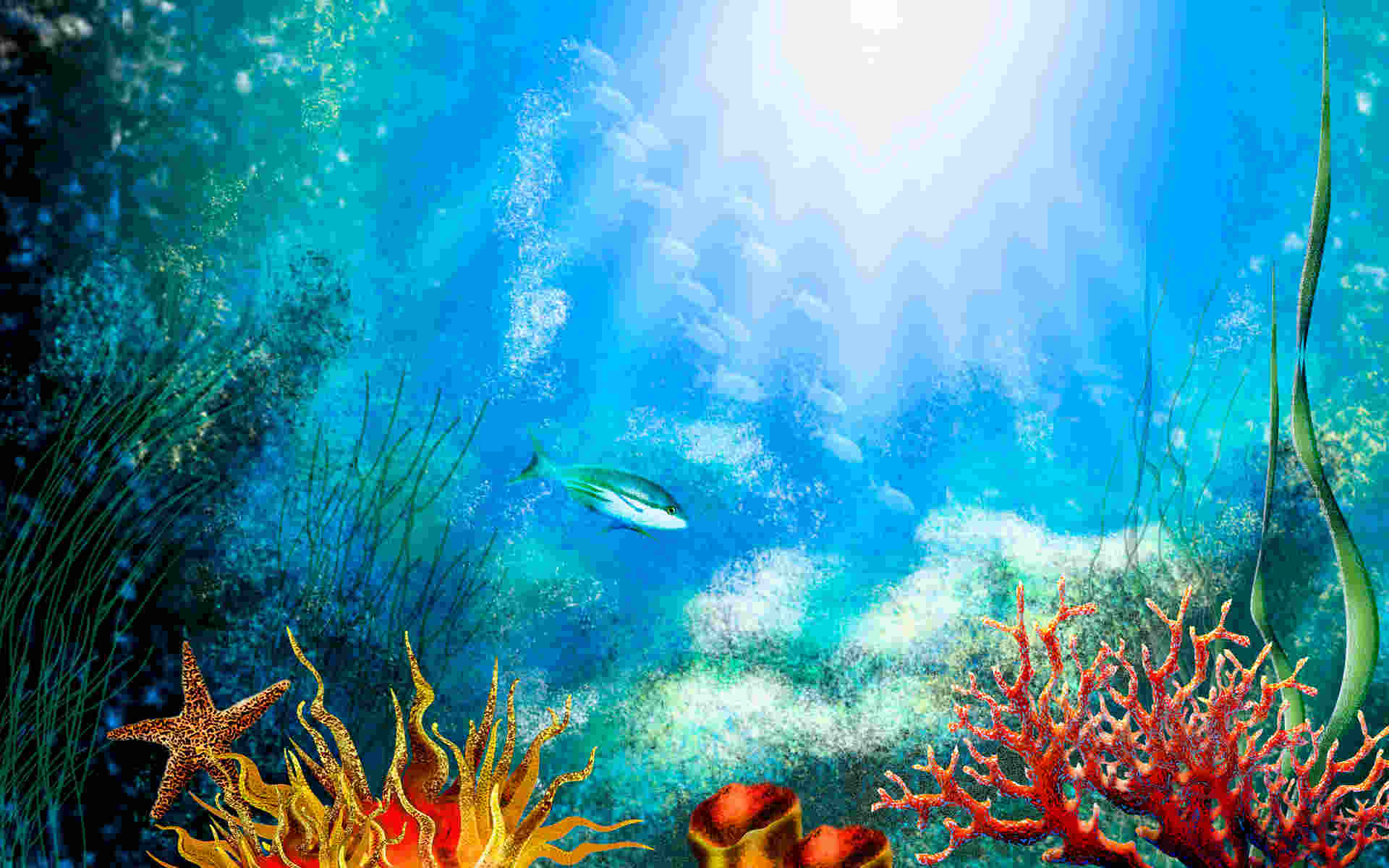 This is an image of Fish Tank Background Printable with water