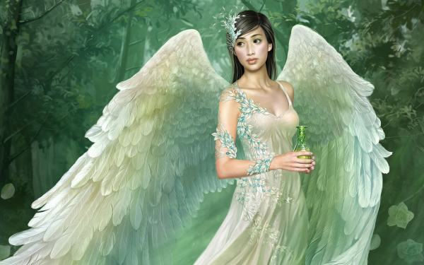 Fairy Wallpapers Fantasy Backgrounds