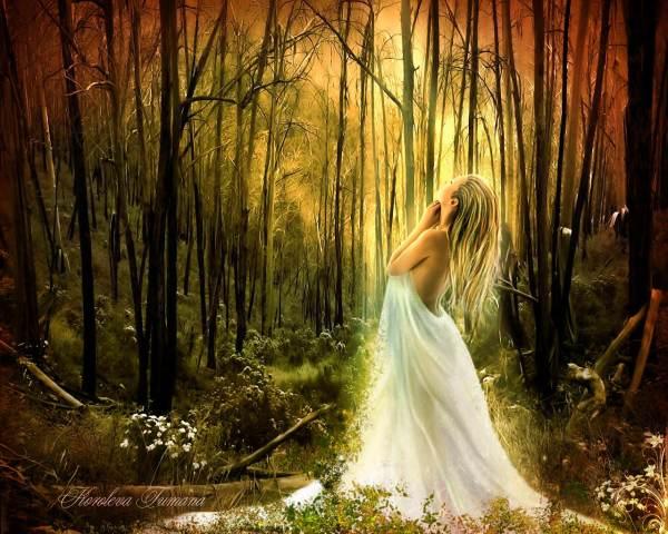 Most Beautiful Fairy