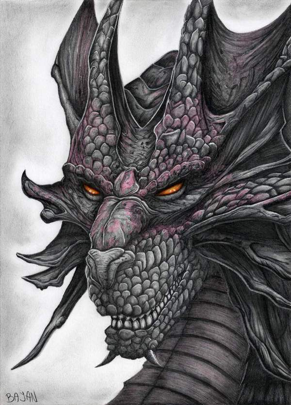Realistic Dragon Drawings