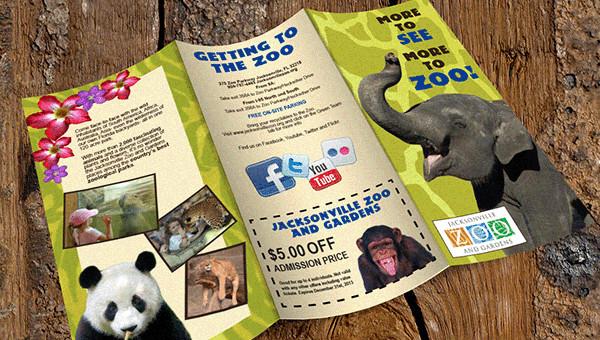 15 Zoo Brochure Templates Editable PSD AI Vector EPS Format