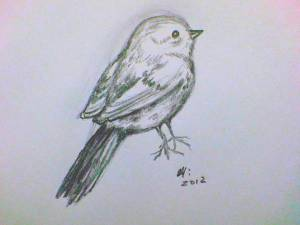 bird drawing simple april drawings birds wall 10th uploaded july which