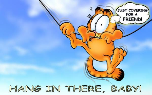 HD Hang In There Baby! Wallpaper Download Free 94990
