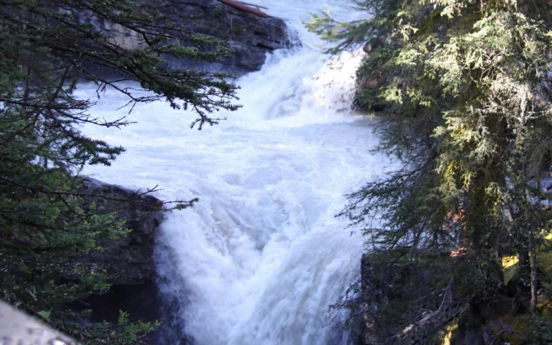 Cute Wallpapers Of Baby Animals Hd Rapid Waterfalls Banff Alberta Wallpaper Download
