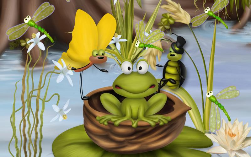 Beautiful Colorful Girls Anime Wallpaper Hd Bug Frog Wallpaper Download Free 119479
