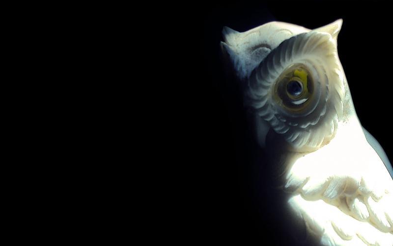 Creepy Anime Girls Wallpaper Hd Owl Statue Wallpaper Download Free 118510
