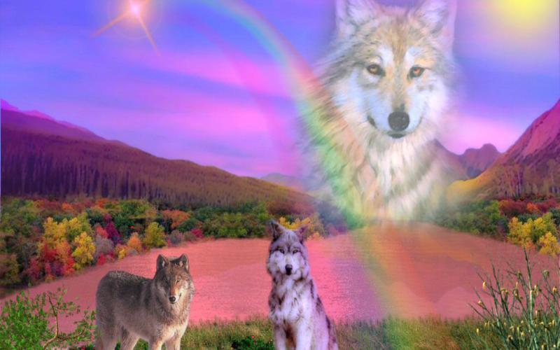 Good Night 3d Moving Wallpaper Hd Rainbow Wolf Wallpaper Download Free 120204