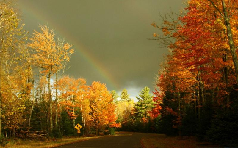 Funny Animated Wallpapers Hd Autumn Rainbow Wallpaper Download Free 56552