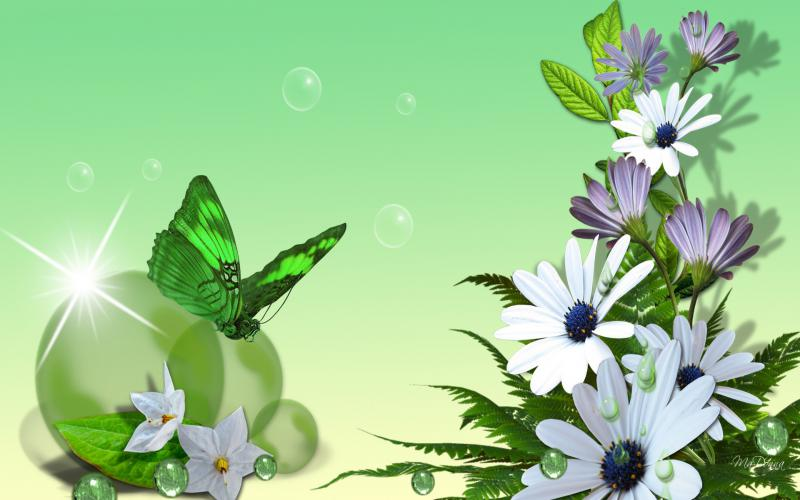 Cute Baby Dress Wallpaper Hd Green Spring Wallpaper Download Free 49564