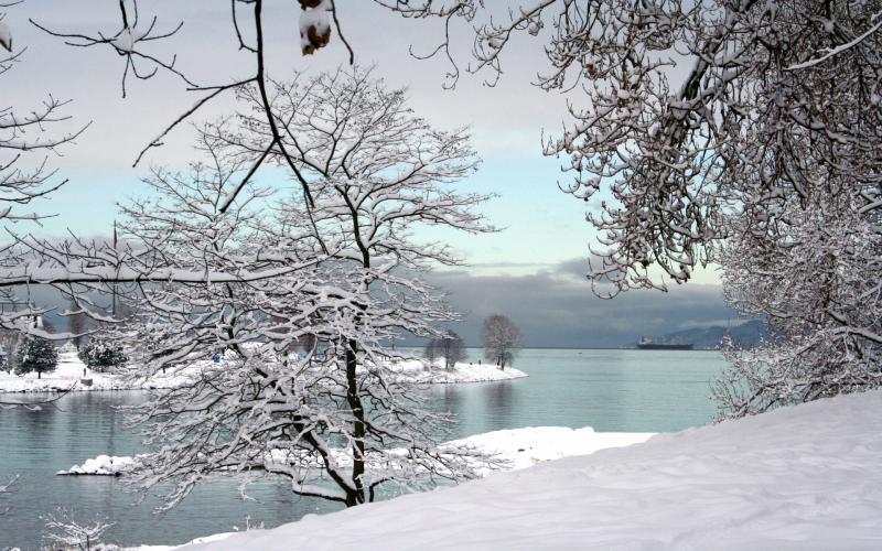 HD A Snowy Winter Scene Wallpaper Download Free 59298