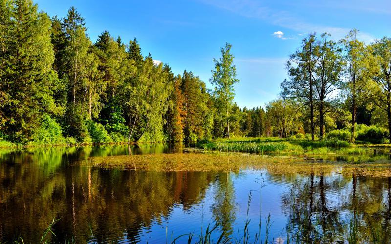 Microsoft Windows 3d Wallpaper Hd Serene Blue Lake Wallpaper Download Free 66943