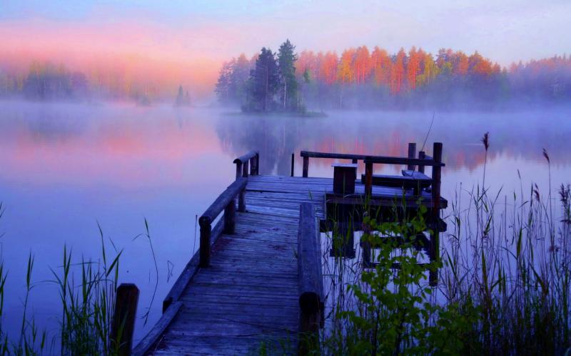 Beautiful Cute Roses Wallpapers Hd Beautiful Foggy Lake Wallpaper Download Free 53287