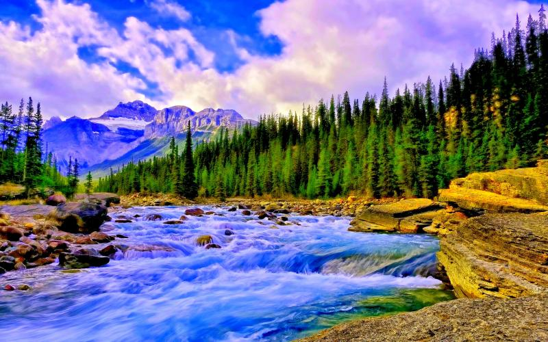 Forest Animated Wallpaper Hd Mountain Creek Wallpaper Download Free 65453