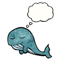 whale cartoon angry premium freeimages looking illustration