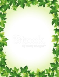 border leaf vector background related premium freeimages