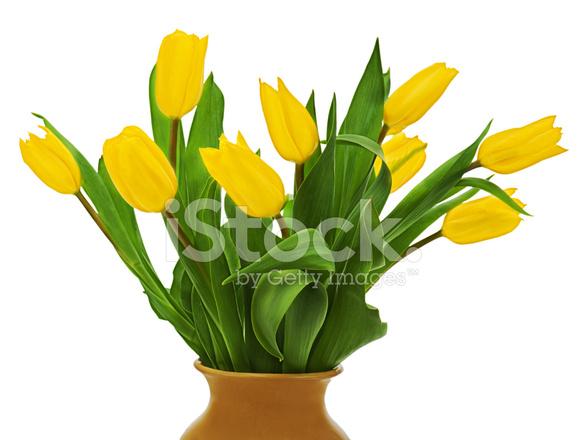 Gelber Blumenstrau Fabulous Gelber In Einer Vase Strauss