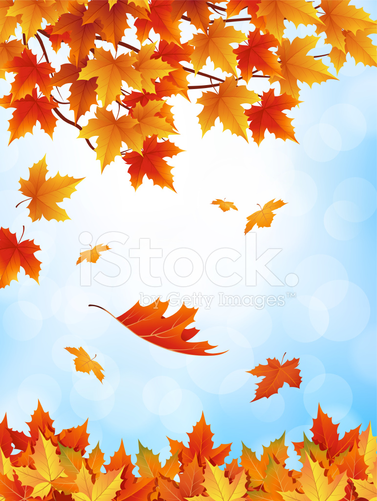 Maple Leaf Wallpaper For Fall Season Autumn Leaves Falling With Blue Sky Stock Vector
