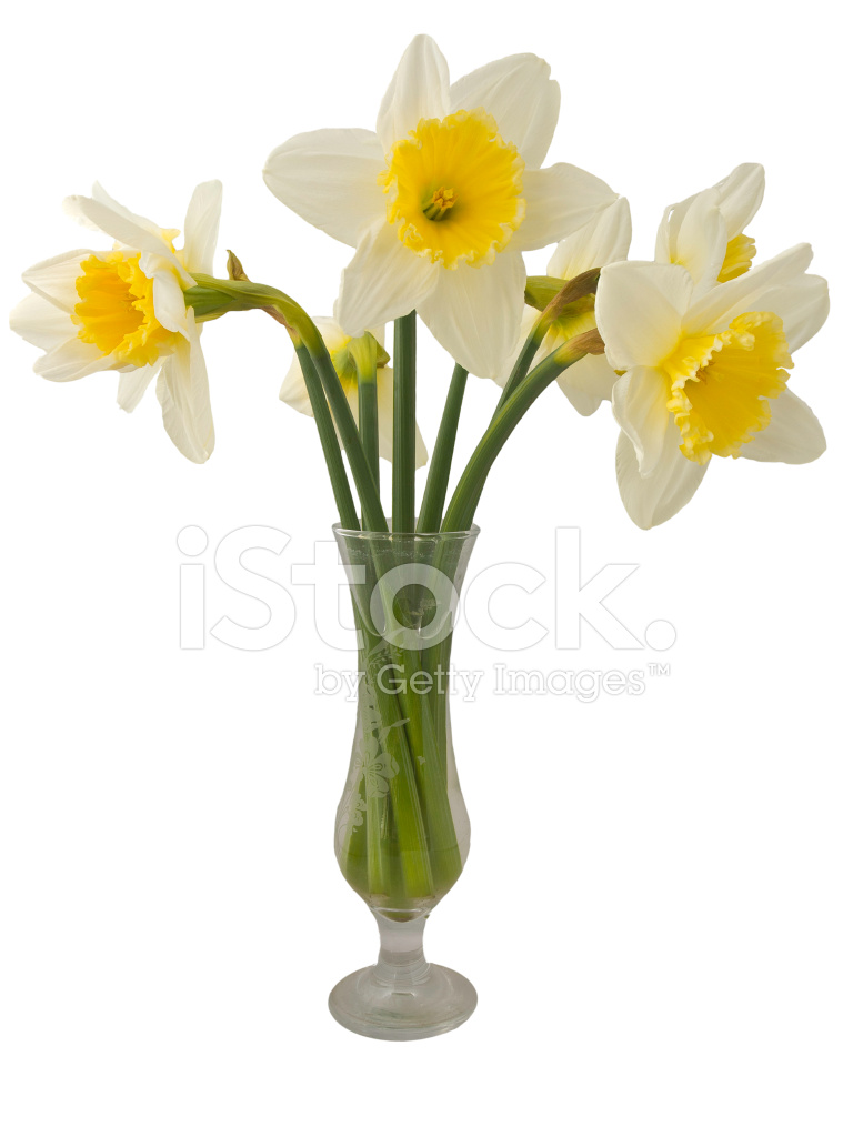 Cartoon flowers in a vase reviewsmspy