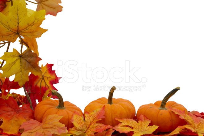 Vegetable Garden In Fall Wallpaper Colorful Fall Border Stock Photos Freeimages Com