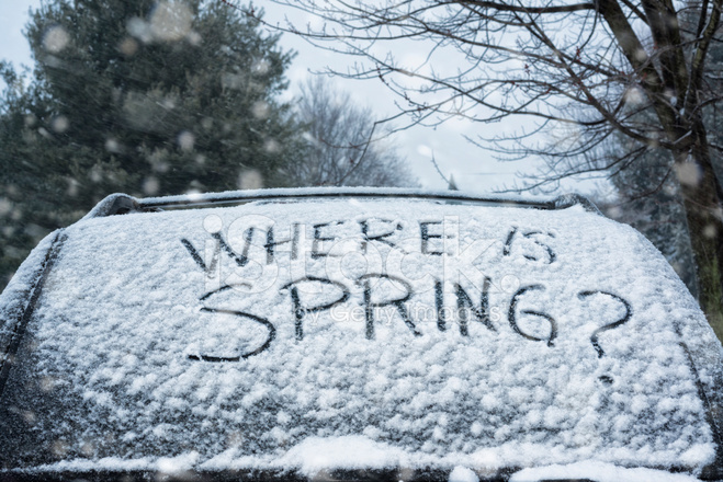 Where IS Spring Written IN Snow on Car Stock Photos