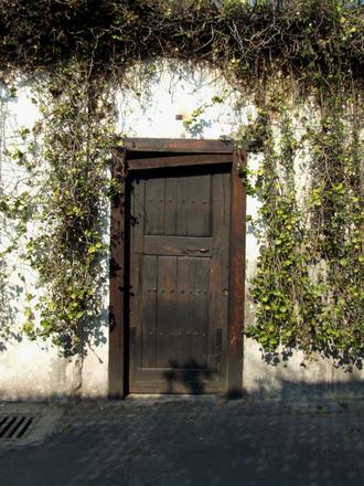 Rústica puerta 1