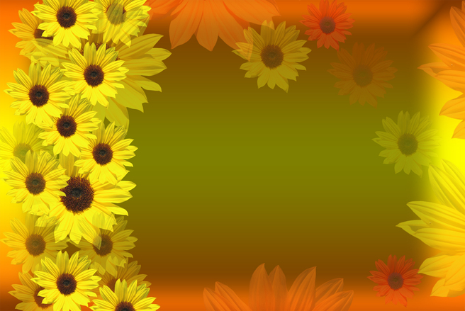 Free Sunflowers border Stock Photo  FreeImagescom