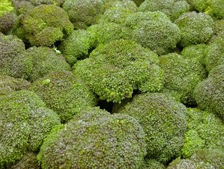 Broccoli,broccoli,fresh,vegetable