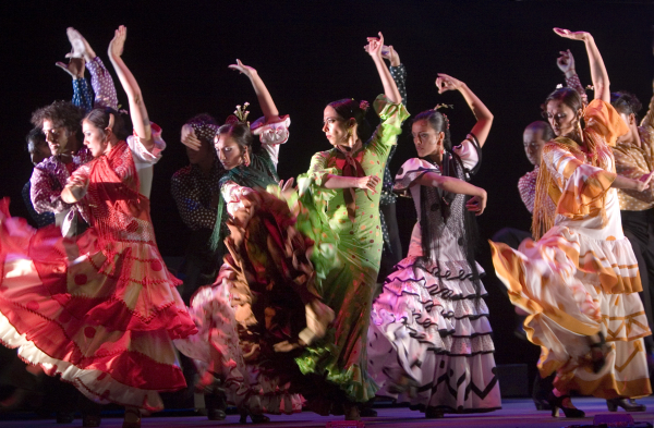 Image result for flamenco dance