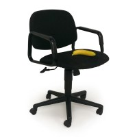 90% OFF - Swivel Computer Chair / Chairs